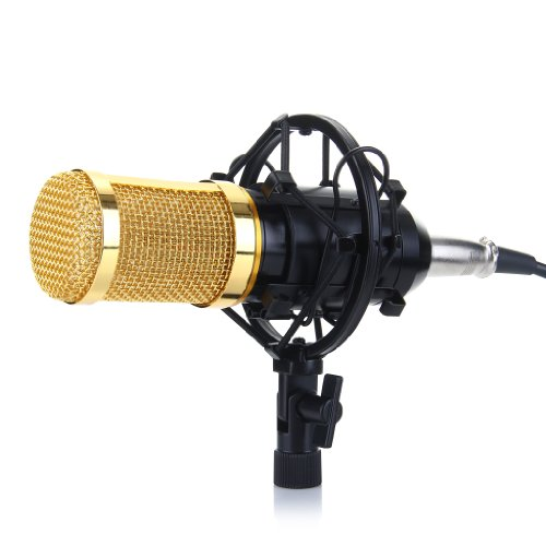 Excelvan Condenser Recording Microphone with Shock Mount Holder, Black
