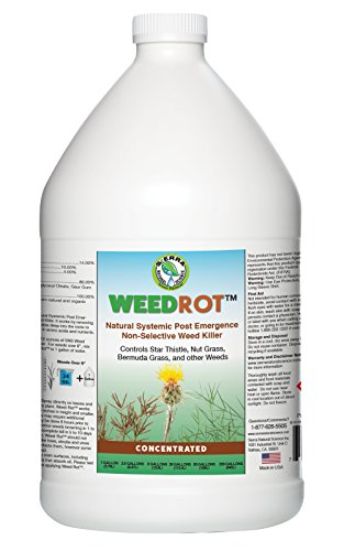 WeedRot Naturally Systemic Weed Killer Concentrate