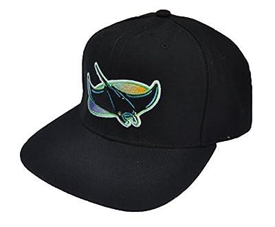 Tampa Bay Devil Rays Vintage 1998-2000 Logo New Era Genuine Merchandise Pro Model Snapback Black Cap