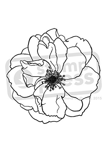 A7 'Peony Flower' Unmounted Rubber Stamp (SP00008614) (Stamp Rubber Peony)