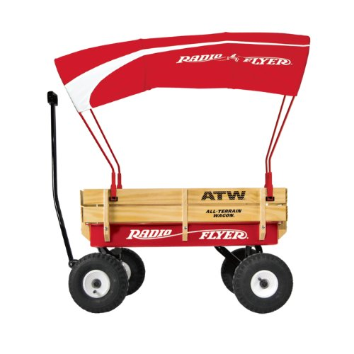Radio Flyer Wagon Canopy Buy Online In Uae Toys And