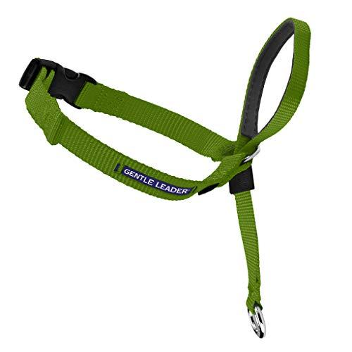 PetSafe Gentle Leader Head Collar with Training...
