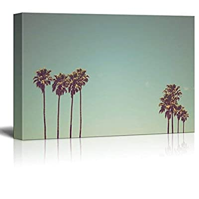 Retro Style Tall Palm Tree Under Clear Sky 12