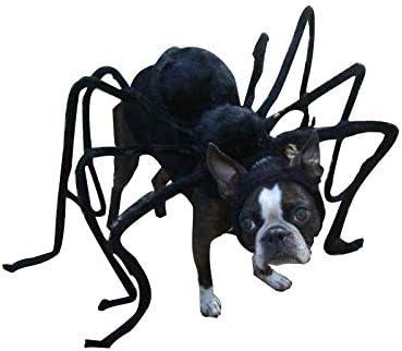 TAIMEI - Disfraz Divertido para Perro o Gato, Accesorio Negro para ...