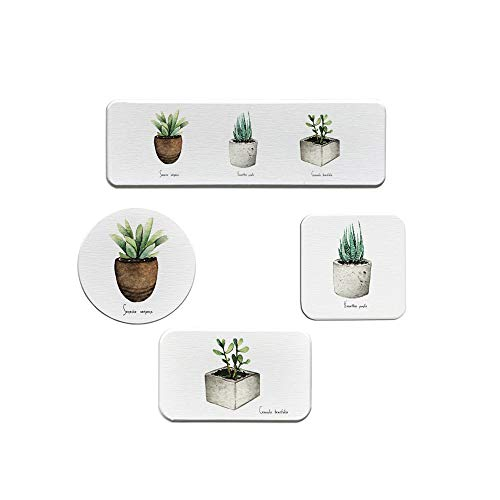 Holder Round Toothbrush (TuuTyss Absorbent Diatomite Soap Holder Anti-Bacterial Coasters Cup Mat Diatomaceous Earth Toothbrush Holder Set,Cactus-4 Pack,Square,Round)