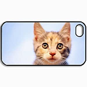 Customized Cellphone Case Back Cover For iPhone 4 4S, Protective Hardshell Case Personalized Cats Yellow Cat On The Lightblue Wall Black