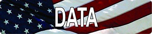 American USA Flag DATA 8