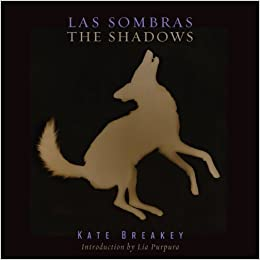 Book Las Sombras/The Shadows (Southwestern and Mexican Photography Series) (Southwestern and Mexican Photography Series, the Wittliff Collections at Texas State University)