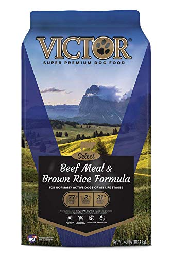 VICTOR Select - Beef Meal & Brown Rice Formula,...