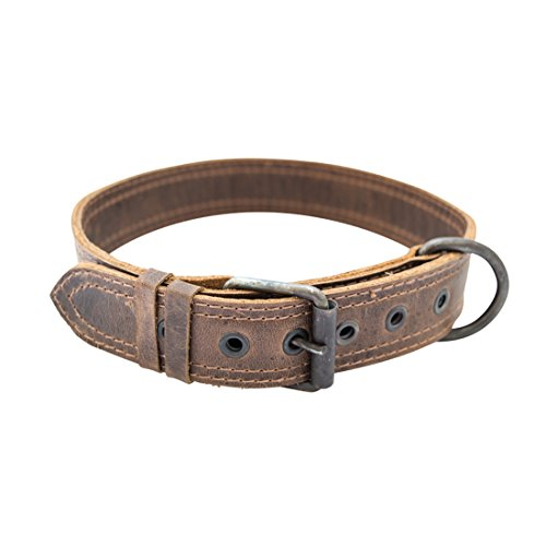 Rustic Leather Dog Collar For Medium Size Dog (10 to 19 Inches) Handmade by Hide & Drink :: Bourbon (Full House Crusher)