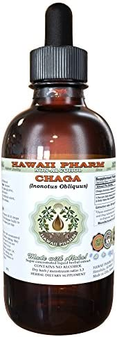 Chaga Alcohol-FREE Liquid Extract, Chaga Inonotus obliquus Whole Mushroom Dried Glycerite 4 oz