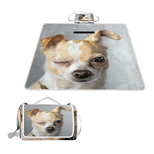 Aluy's boutique Winking Chihuahua Appears to Say Hello Extra Large Picnic Camping Mat 57x59inches for Summer Beach Hiking Grass Festivals Travel Outdoor Picnic Foldable Blanket Moisture-Proof Mat
