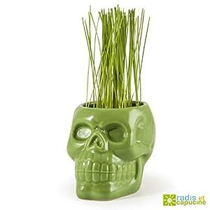 De calavera en cerámica verde para un césped de infierno