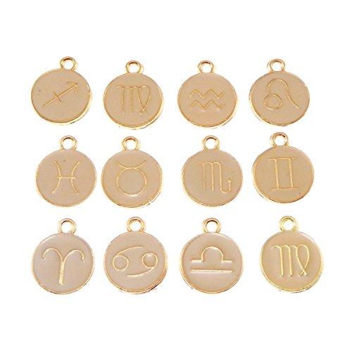 JulieWang 40pcs Mixed Pink Enamel Zodiac Charms for Jewelry Making (Enamel Zodiac)