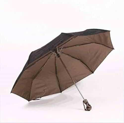 46a1e3a072d2 Shopping Browns or Clear - Auto Open & Close - Umbrellas - Luggage ...
