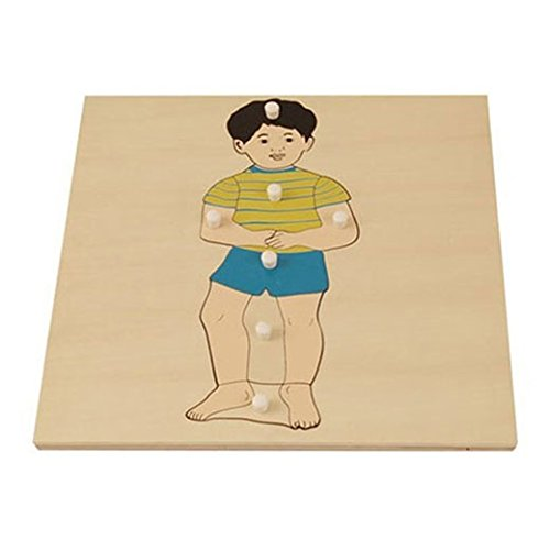Wood Puzzle Body (Boy Puzzle)