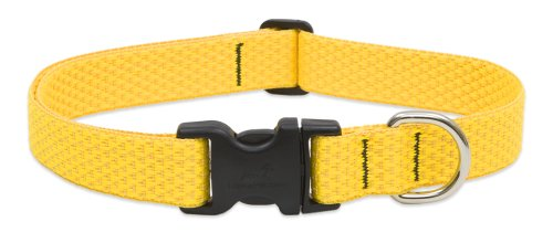 "LupinePet Eco 1"" Sunshine 16-28"" Adjustable Collar for Large Dogs"