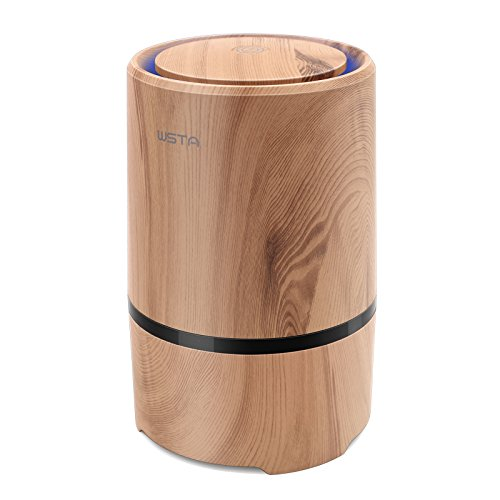 Desktop Air Purifier with True HEPA Filter, WSTA Portable Mini Air Cleaner Ionizer to Reduce Allergens,Smoke,Odors,Dust,Mold,for Home, Room ,Office,Night Light
