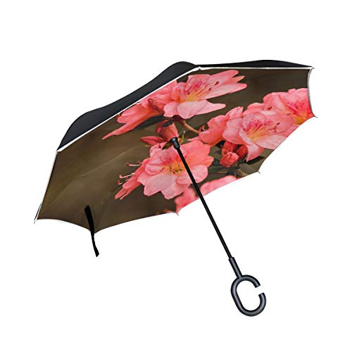 - Double Layer Inverted Pink Azaleas Rhododendron Kurume Azalea Coral Bells Umbrellas Reverse Folding Umbrella Windproof Uv Protection Big Straight Umbrella For Car Rain Outdoor With C-shaped Handle