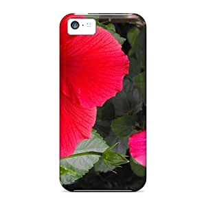 New Fashion Case Cover For Iphone 5c(ixGWhHj1296xIDbw)