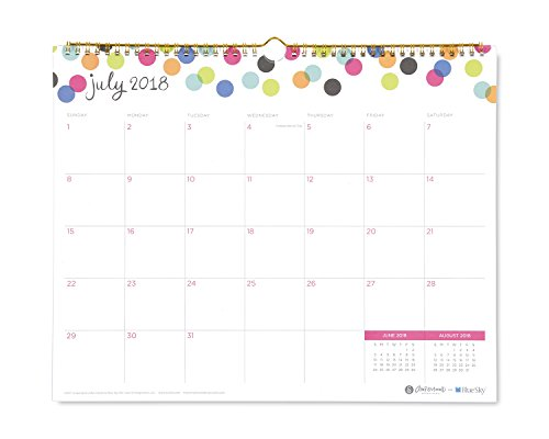 Ampersand for Blue Sky 2018-2019 Academic Year Monthly Wall Calendar, Twin-Wire Binding, 15