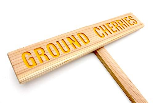 (GROUND CHERRIES Sign, Outdoor Marker, Yard Art, Fruit Sign, Plant Label, Annual Marker, Ground Cherry Sign, Pie Fruit, Jam Fruit)