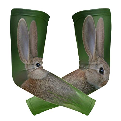 Chairs Rabbit Arm - Arm Sleeves Rabbit In The Grass Man Baseball Long Cooling Sleeves Sun UV Compression Arm Covers