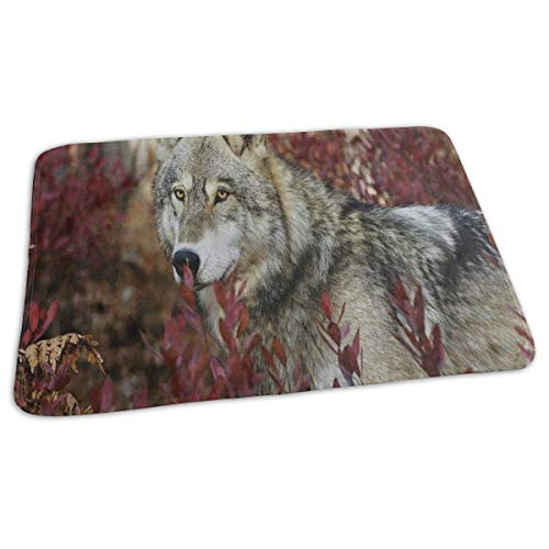 Changing Pad Grey Wolf in Beautiful Red Forest Baby Diaper Incontinence Pad Mat Special Girls Mattress Cover Sheet for Any Places for Home Travel Bed Play Stroller Crib Car