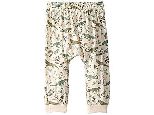 (PEEK Baby Boy's Lizard Happy Pants (Infant) Stone XS (0-3 mos))