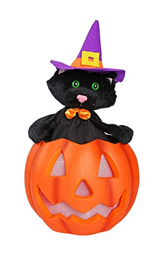 3FWW Animated Up and Down Black Cat in Jack-O-Lantern with LED Illumination, Halloween Sound Effects and Sound Sensor]()