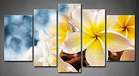 Framed Frangipani Plumeria Rubra Bouquet Wall Art Canvas Print Flower Picture