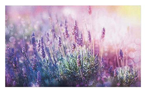 Lunarable Lavender Doormat, Fantasy Dreamlike Herbal Meadow Close Up View Magical Nature Theme, Decorative Polyester Floor Mat with Non-Skid Backing, 30 W X 18 L Inches, Teal Pale Pink Lilac