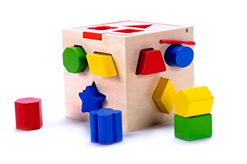 Classic Wooden Geometric Shape Sorter Cube Toy with 10 Color Solid Wood Pieces, Hinged Lid | Developmental Toy for Preschool Toddlers, 1, 2 & 3 Year Old Boys & Girls
