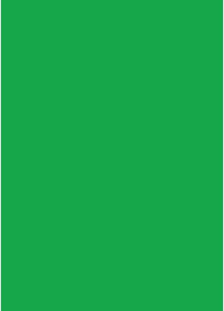 Green Westcott 579 Green Screen Backdrop 5 x 7 Feet