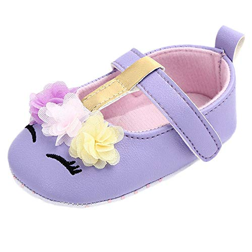 AgrinTol Cute Baby Girls Newborn Infant Cartoon Floral Casual First Walker Toddler Shoes Purple ()