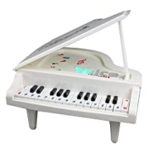 Fajiabao Ideal Christmas Birthday Gift Electronic 14 Keys Little Educational Piano Music Keyboard Toy Set with Beautiful Light for Children Boys Girls Early Learning