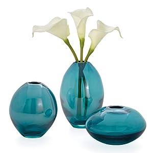 416iFCsK4fL._SS300_ Beach Vases & Coastal Vases