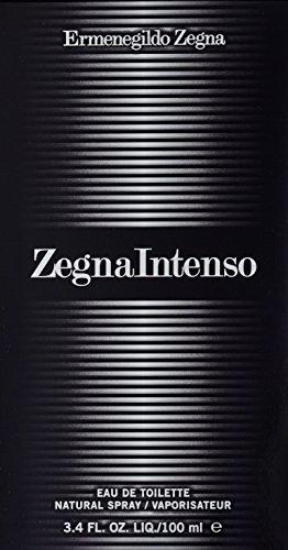 Ermenegildo Zegna Intenso Eau De Toilette Spray for Men, 3.4 Ounce