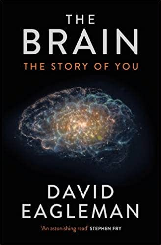 Book The Brain: The Story of You