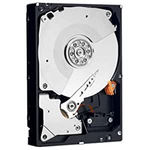 "Western Digital 2TB SATA HDD - Disco duro (Serial ATA II, 2000 GB, 8,89 cm (3.5""), 1,3W, 1,3W, 5 - 55 °C)"