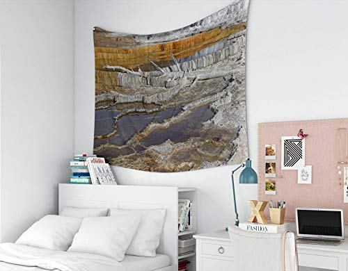 Capsceoll Tapestry for Men, Large 60x50 Inches Tapestries Hot Springs is a Large Complex of hot Springs on Hill Travertine in Yellowstone Wall Hanging Tapestry for Décor Dorm Tapestry Living Home ()