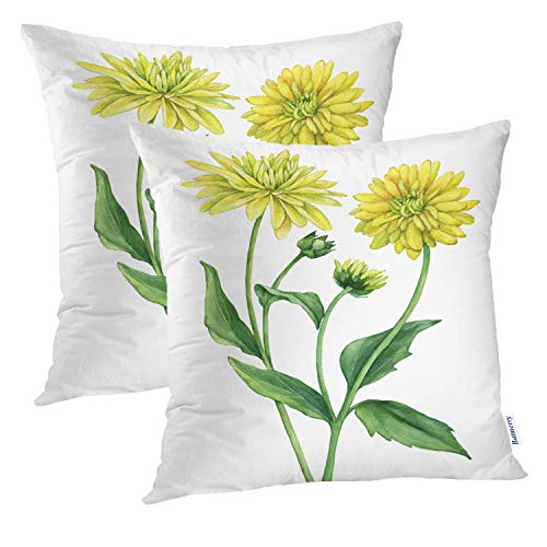 (Batmerry Flower Pillow Cover 18x18 Inch Set of 2, Sketch Herbal Flowers White Black Leaf Herb Plant Double Sided Square Pillow Cases Pillowcase Sofa Cushion)