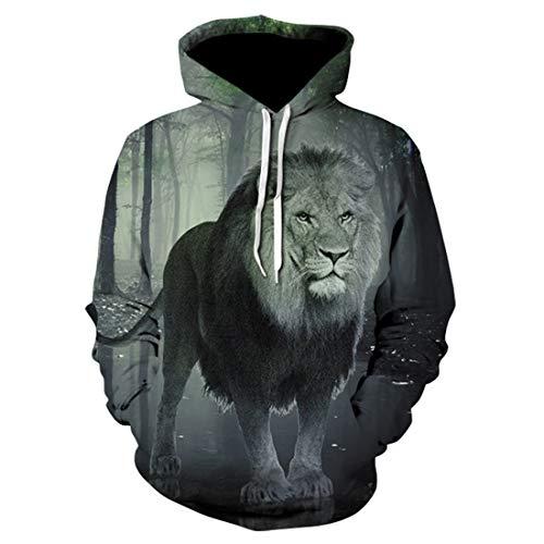 - heavKin-Winter Men's Autumn Spring 3D Printing Hoodies Sweatershirt Boy Leisure Tops Jacket Loose Coat (Gray, XXXL)