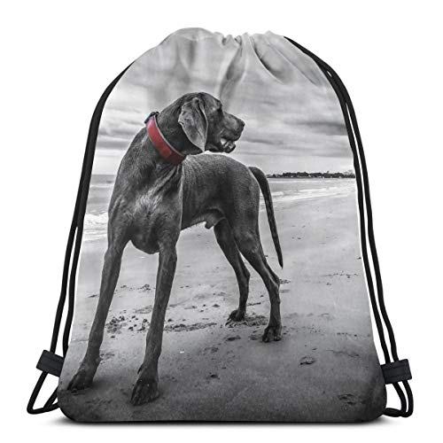 Weimaraner Dog Beach Pet Black Personalized Sports Pumping Rope Bag Is Suitable For Men And Women Outdoor Travel -