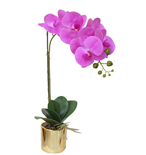 Artificial Orchid Arrangement with Golden Vase, Lifelike & Real Touch Phalaenopsis Plant Flower Bonsai for Home Decor, Pink (Arrangements Orchid Large)