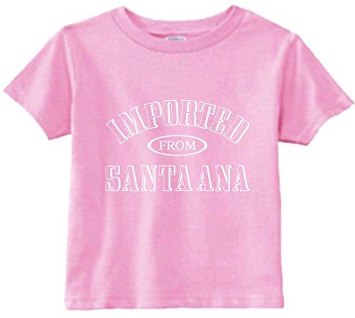 Signature Depot Funny Baby T-Shirt Size 2T (Imported From Santa Ana (CA) Toddler Tee - Ana Shopping Santa