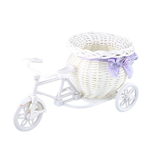 Farook-Plastic White Tricycle Bike Design Flower Basket Storage