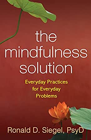 The Mindfulness Solution: Everyday Practices for Everyday Problems ...