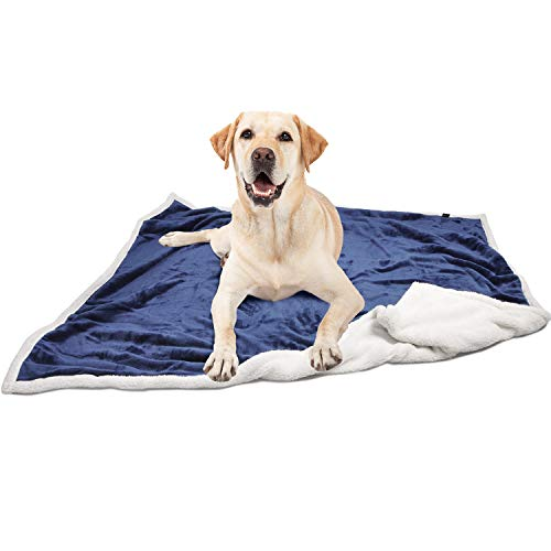 Pawsse Large Dog BlanketSuper