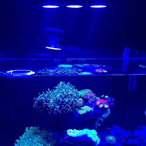 Iluminación de agua salada con luz LED para acuario de interior 30W ...